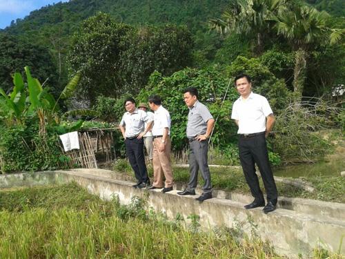 Kiểm tra việc thực hiện nguồn vốn sự nghiệp trong xây dựng NTM tại huyện Đà Bắc