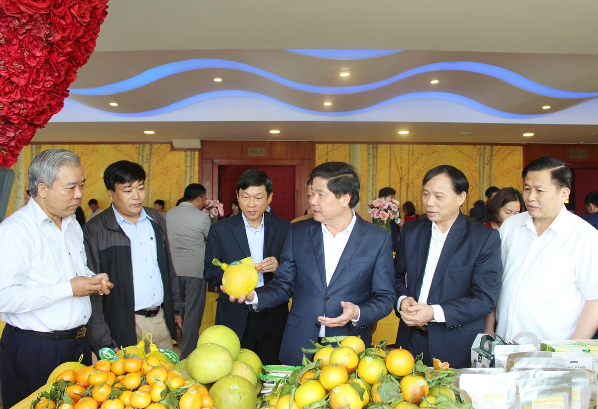 Hội nghị thúc đẩy phát triển bền vững cây ăn quả có múi tại các tỉnh phía Bắc