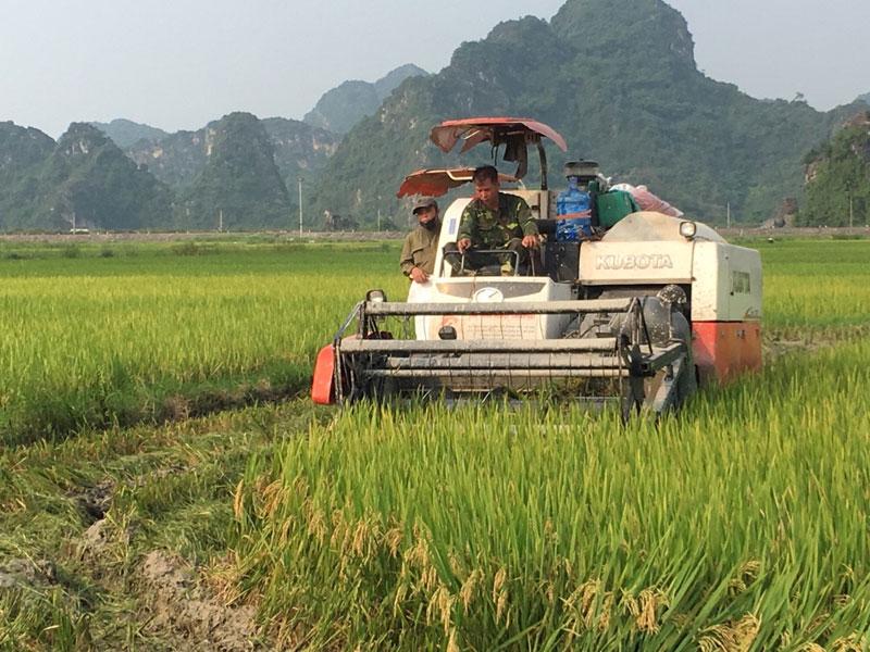 Đẩy mạnh cơ giới hóa trong sản xuất nông nghiệp