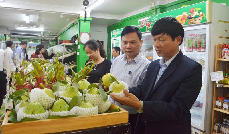 Nhân rộng các mô hình sản xuất nông nghiệp hiệu quả cao